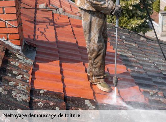 brosse nettoyage toiture fabulous le nettoyage toiture du draguignan with brosse nettoyage. Black Bedroom Furniture Sets. Home Design Ideas